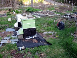 two hives and a bag