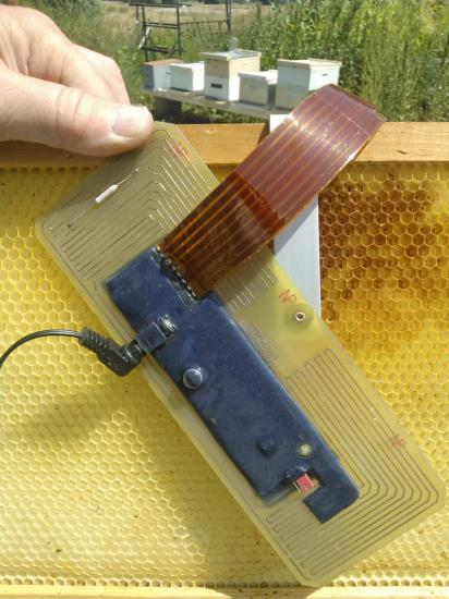 in-hive heater
